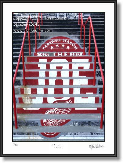 Click on this image to see an enlarged view of FAREWELL SEASON RED WINGS photo print.